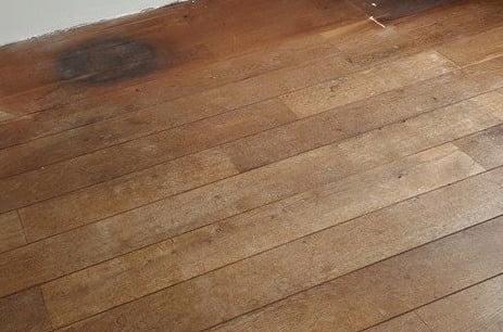 Last van schimmel of weerplekken op uw laminaatvloer